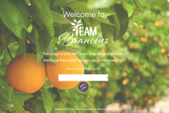 Team Branches
